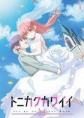 TONIKAWA Over the Moon For You anime
